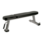 Toorx - Panca piana professionale WBX2000